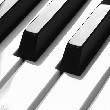 钢琴教程大全