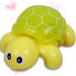 甲鱼王八乌龟鳖