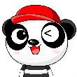 熊猫家网络