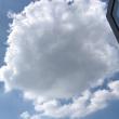 柚子木字幕组百度云分享