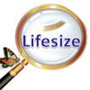 lifesize8812的主页