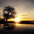 QQ191929534