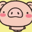 致敬所有养猪人 后备母猪 种母猪 高产母猪 二元母猪