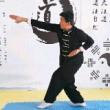 传统武术 通背拳  在快点能不能起飞