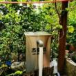 庭院鱼池安装杰蒙尼过滤器,运行正常期待后期效果