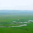 美丽的大草原。