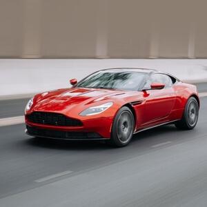 #我要上热门#你喜欢什么宠物