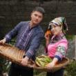 #家乡特色美食#吃盘青椒炒肉,就sha了一头黑猪,中秋吃猪蹄,国庆吃猪头你们想吃啥